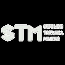 stm cópia.png