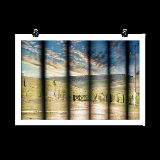 Fazenda #36 - Poster