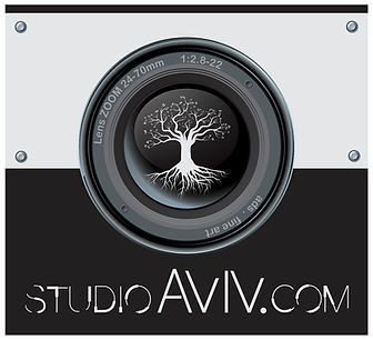 logo AVIV _ HEY! 2015 16X9.jpg