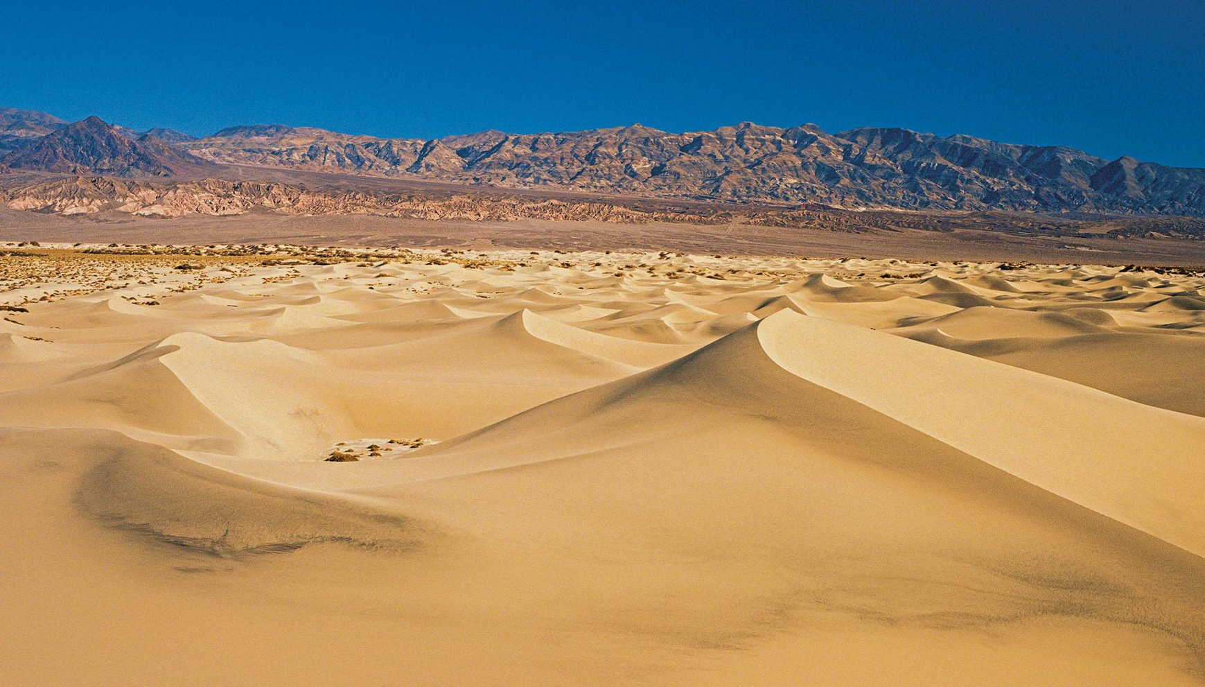 big_death_valley_100x60_20101105_121131.