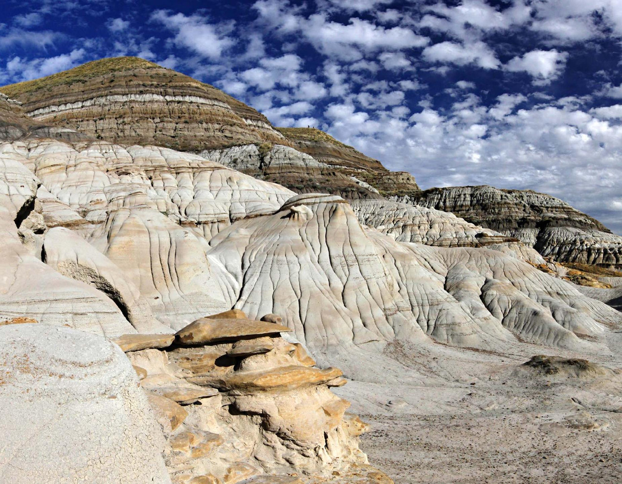 9165-67_drumheller_valley_20101120_17112