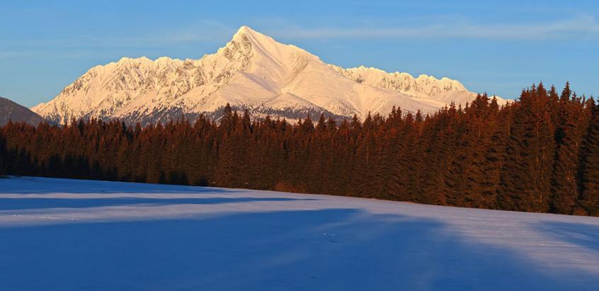 5V2A1444 Panorama.jpg