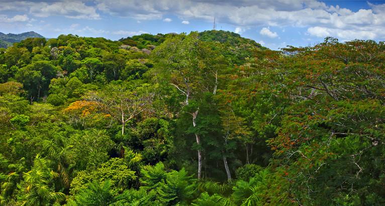 0M4A0092 Panorama.jpg