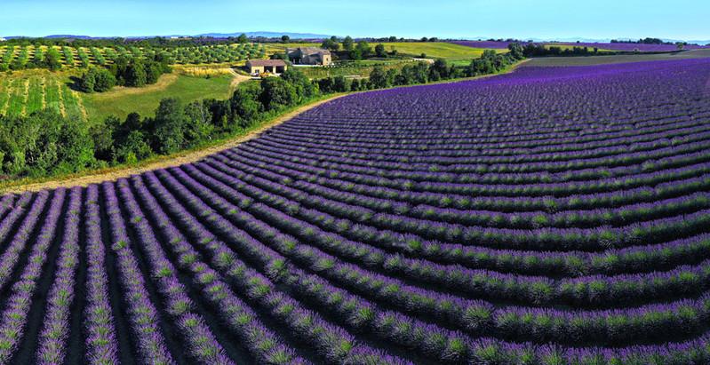 DJI_0904 Panorama.jpg