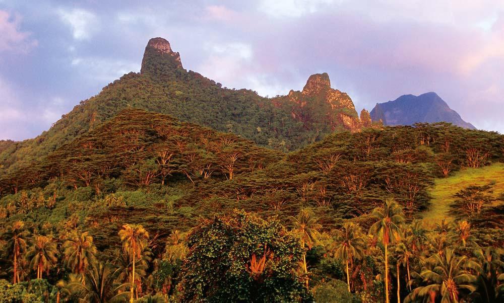 moorea,_french_polynesia_20131003_091025