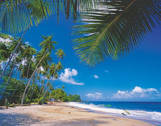 trinidad_20101105_121127.jpg