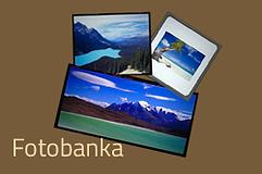 image_bank_sk.png