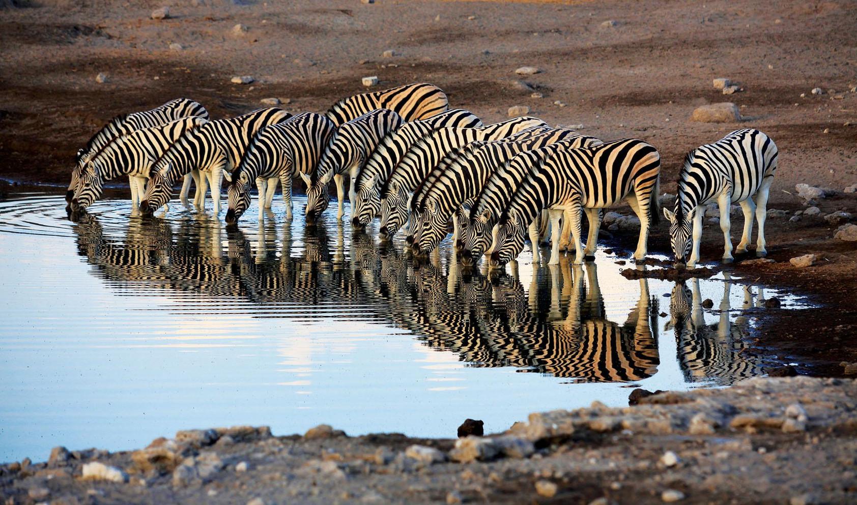 07_namibia_20101105_111104.jpg