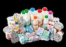 Продукция Суздальского молочного завода