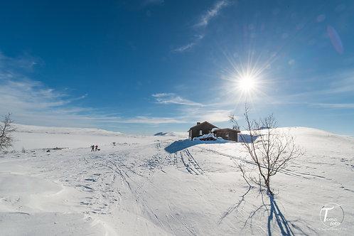 Vinteridyll