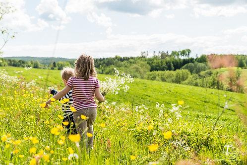 Barn i blomstereng
