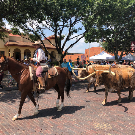Visiting Dallas, the Cowboys of Fort Worth, J.R. of Southfork and a Somber Moment at Dealy Plaza