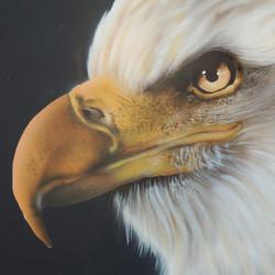 Custom airbrush of eagle head