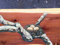 Custom airbrush of limbs & nest