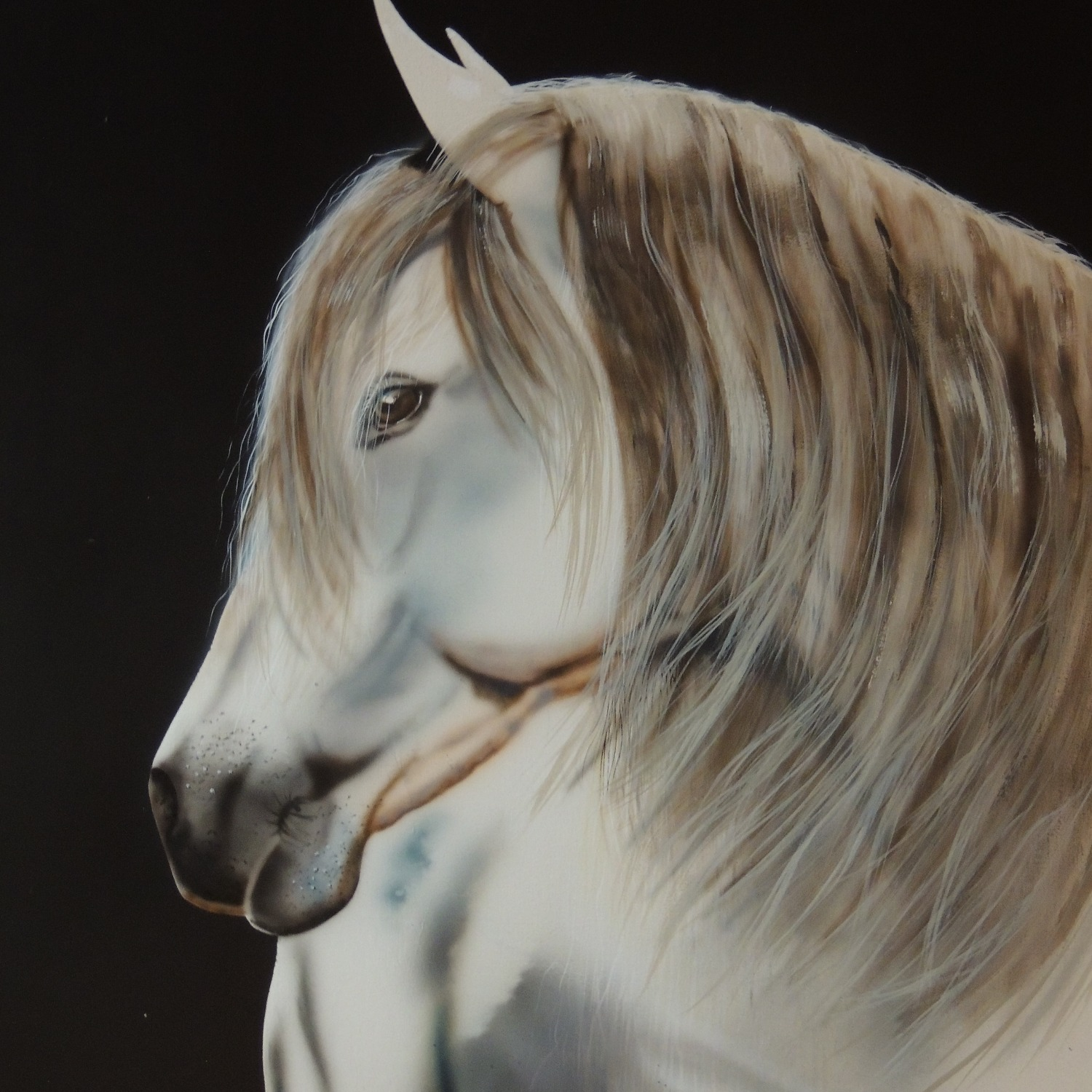 Custom airbrush of horse