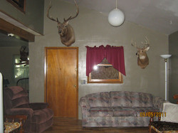 cabin-2011-and-easter-044.jpg