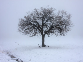 Winter Skin Woes