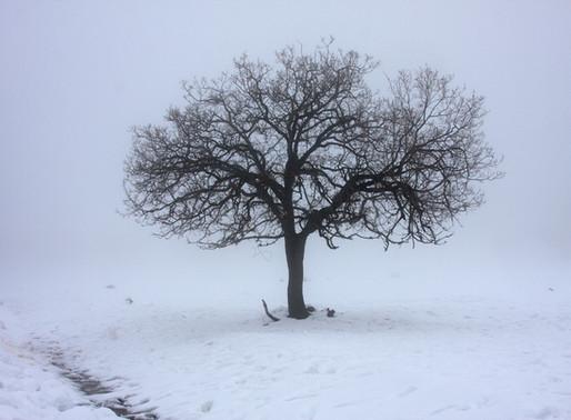Rozchody 3 - strach ze samoty