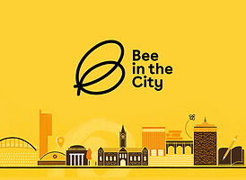 bee-in-the-city-manchester.jpg