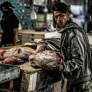 iran fish.jpg