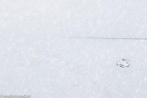 Frozen OB Highway - Andriane's Trekol.