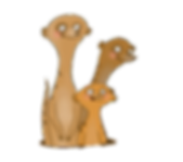 Meercat family.png