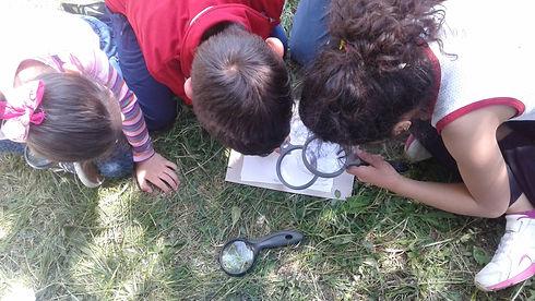 bambini-ricerca-lente.jpg