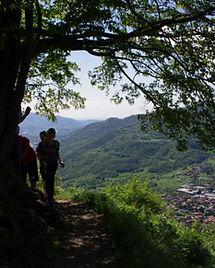 Panorama sui laghi dal monte Barro (2).j