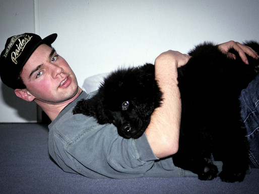 Kodachrome 64 / mein Hund & ich...
