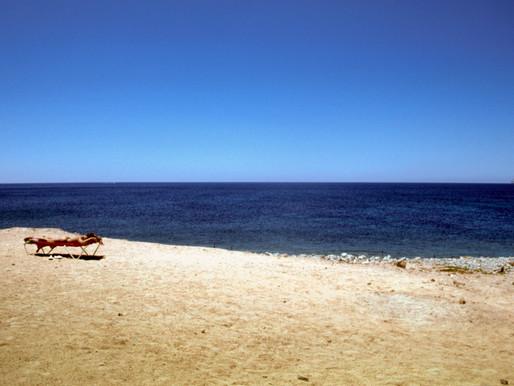 Kodachrome 64 auf Ibiza