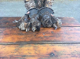 Grouse Hunters Bag Limit