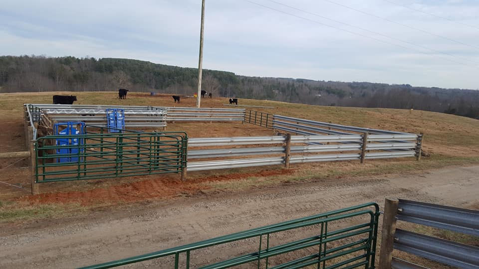 Cattle Pens with Headgates