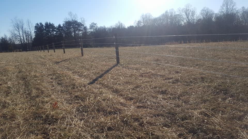Electric Livestock Fence