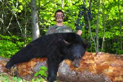 Derek Bear Fluffed.jpg
