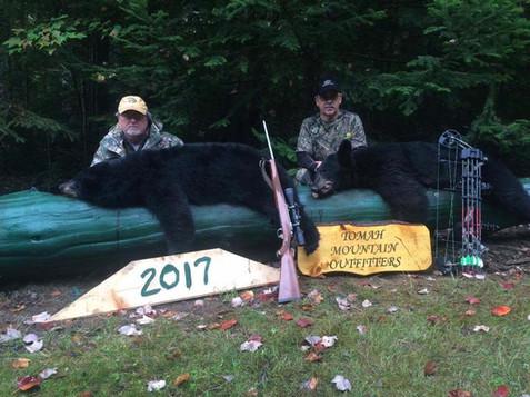 Bow Hunting Bear