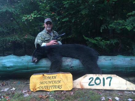Bear with Handgun
