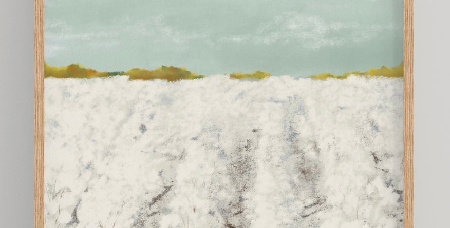 Cotton Fields Print