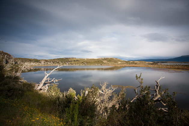 Light of Patagonia Austral.