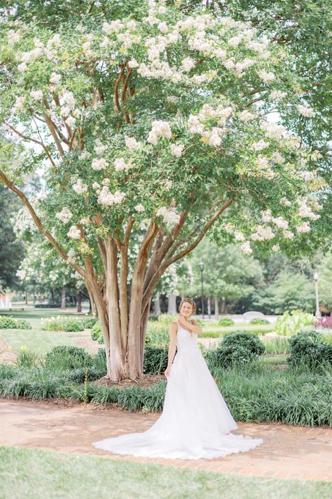 Catherine-Bailey-Wedding-279.jpg