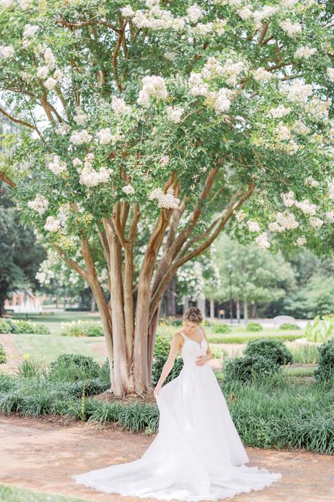 Catherine-Bailey-Wedding-278.jpg