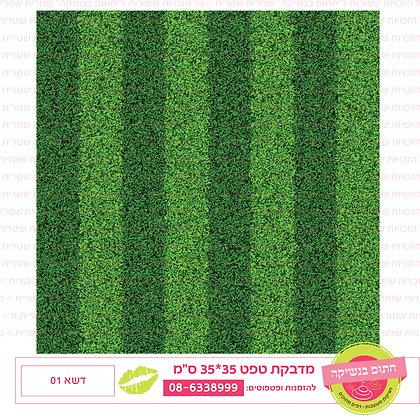 דשא 01