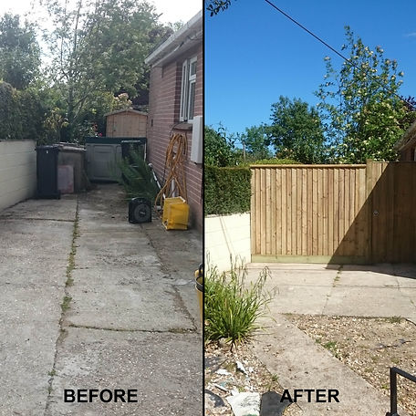Before and After Fencing