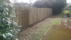 New fence panels added to Dorset