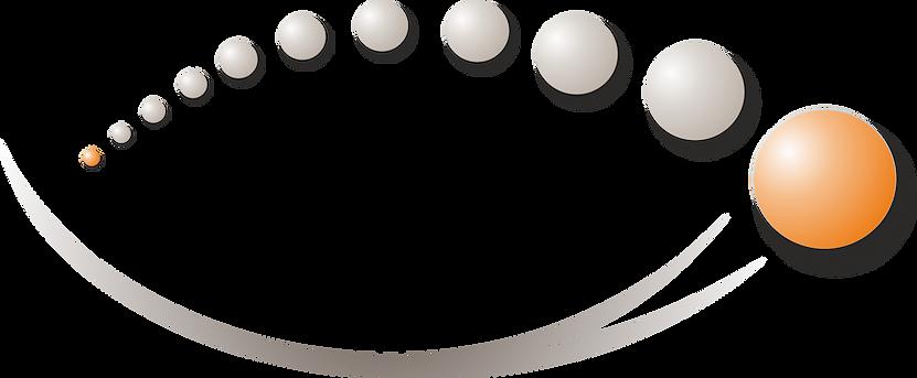 Reinsch Logo.png