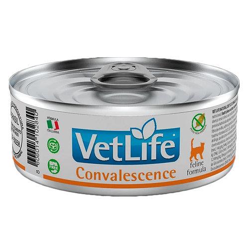 Alimento Úmido Para Gato Convalescença Vetlife Farmina