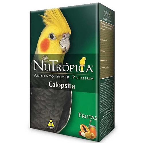 Ração Nutrópica para Calopsitas com Frutas
