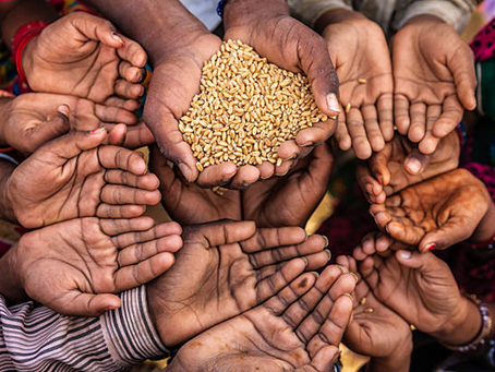 There is a global food surplus, so why are millions of people still food insecure