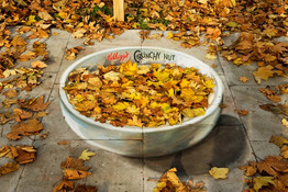 Kellog's Crunchy Nut promo