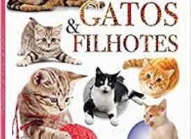 Cuidando de gatos e filhotes - Maravilha de aprender