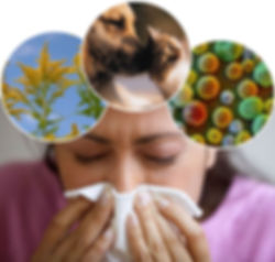 consulta com alergista